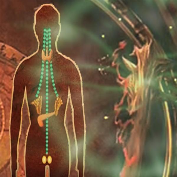 Видеозаклинание «Лечение гормональной системы»
