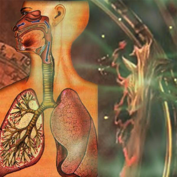 Видеозаклинание «Лечение органов дыхания»