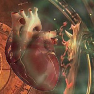 Видеозаклинание «Лечение сердца»