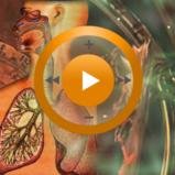 Видеозаклинание «Лечение органов дыхания» для прибора Гекс-1