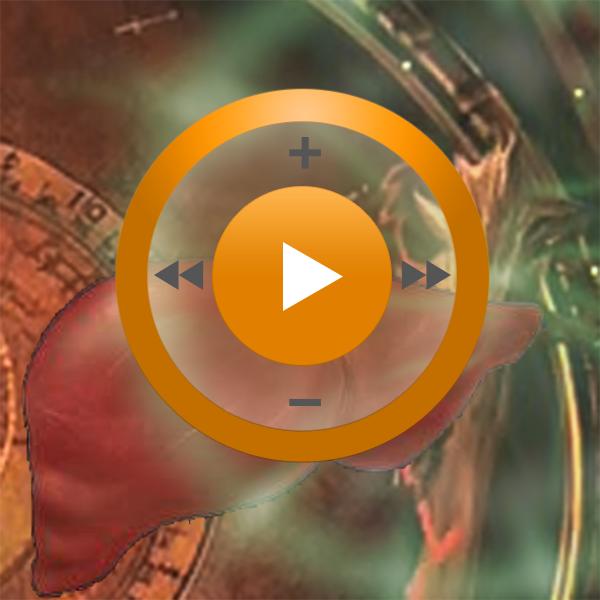 Видеозаклинание «Лечение печени» для прибора Гекс-1