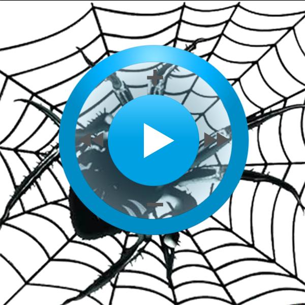 Видеозаклинание «Майянские пауки» для прибора Гекс-1