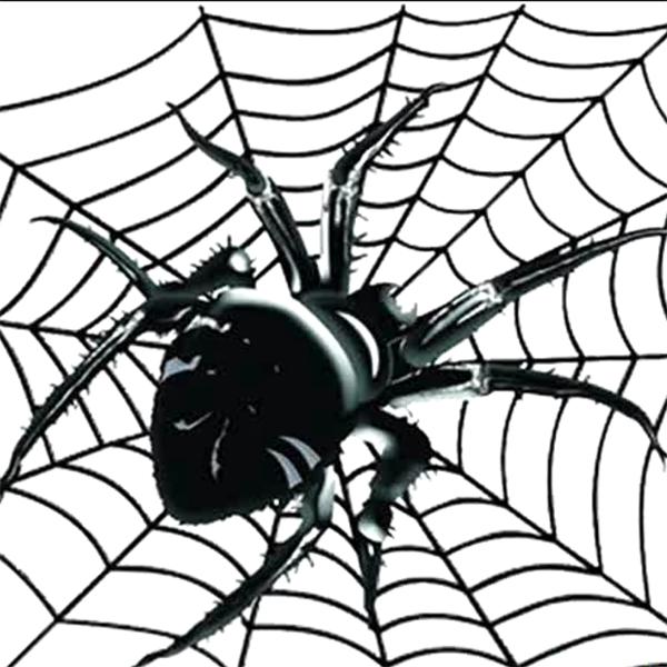 Видеозаклинание «Майянские пауки»