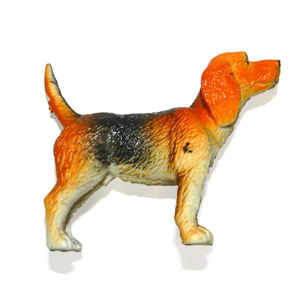 Familiar Dog5 1