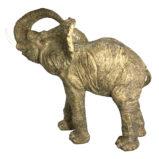 №476 Большой слон Силы