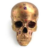№a1786 Тибетский череп